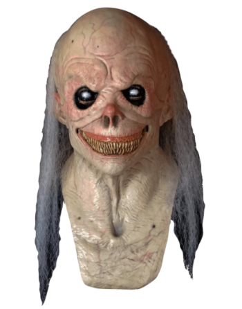 Fester mask
