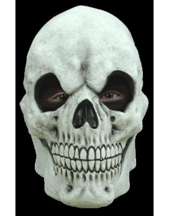 Skull blanca