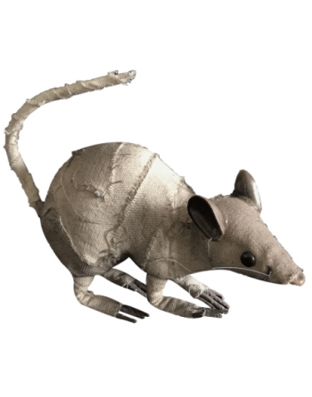 Mummy Rat