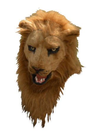 Lion moving mouth