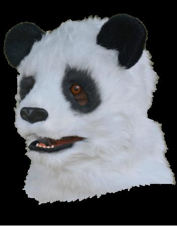 Panda moving mouth