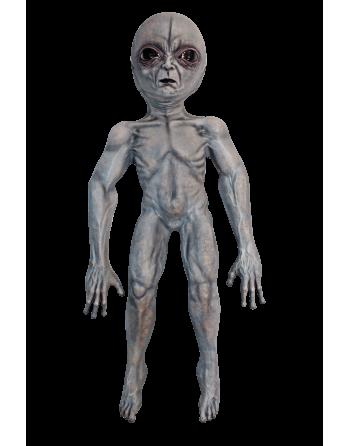 Area 51 prop
