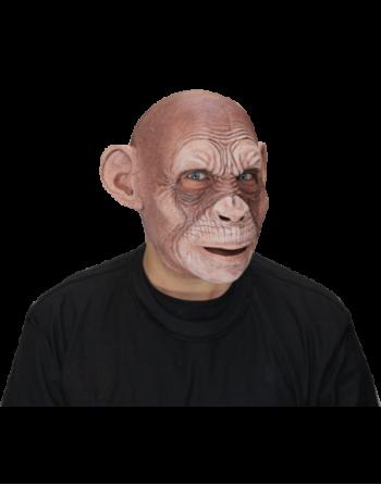 Julius ape